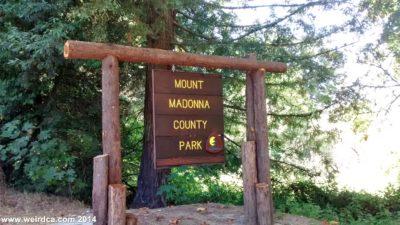 madonna sign